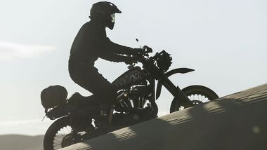 Harley-Davidson 1200 Roadster Desert Wolve.