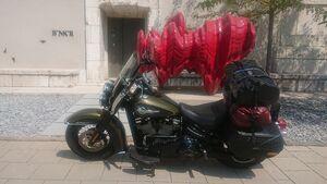 Harley-Davidson Heritage Classic Dauertest 2020