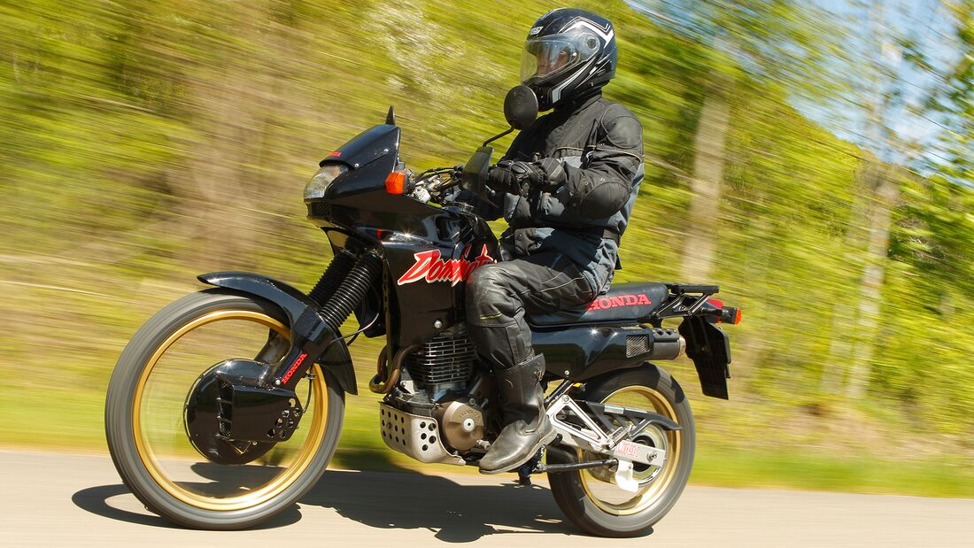 Honda NX 650 Dominator im Fokus