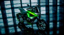 Kawasaki Adaptive Designconcept IAAD