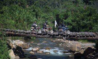 Monkey Run Peru