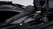 Suzuki Hayabusa Web-Edition