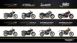 Triumph Gold Line Edition