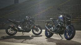 Yamaha MT-125 MT-03 Sportpaket